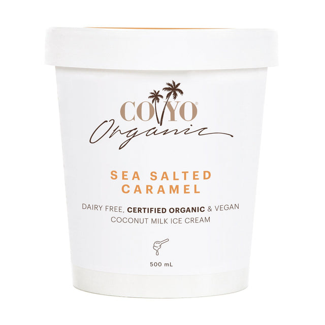 Coyo Organic Coconut Ice Cream Salted Caramel