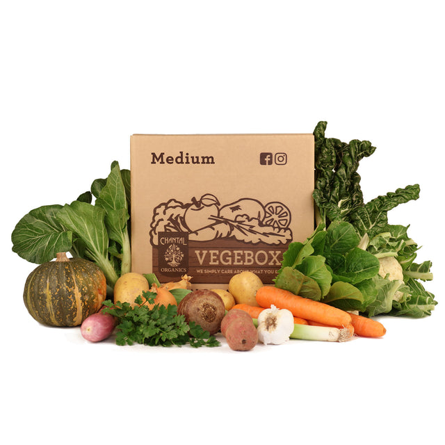 Medium Vege Box
