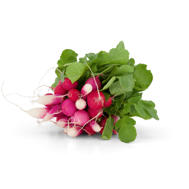 Organic Red Radishes Bunches
