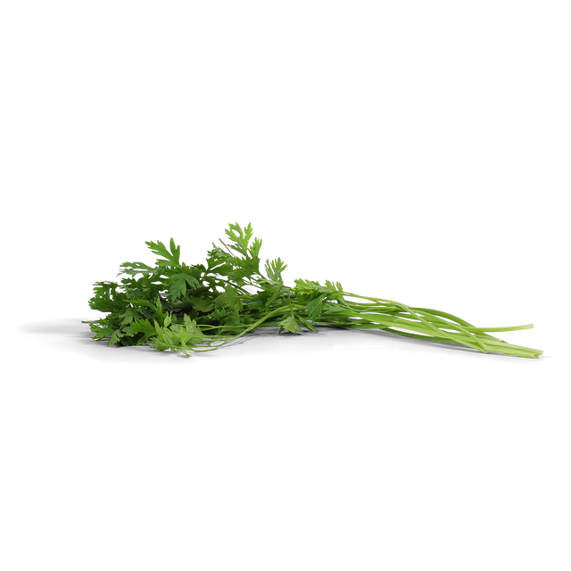 Organic Traditional Flate Leaf Parsley