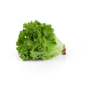 Organic Fancy Green Lettuce