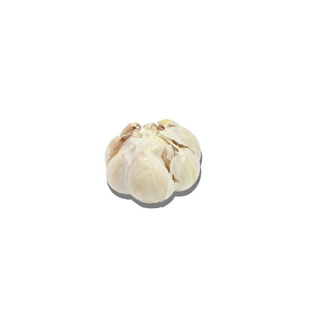 Organic New Zealand Garlic