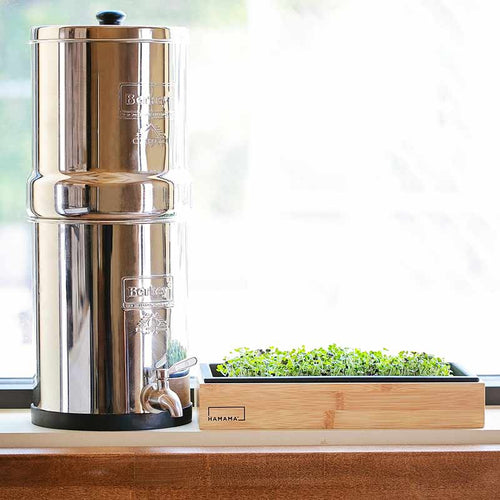 Using Berkey to Start your Spring Garden