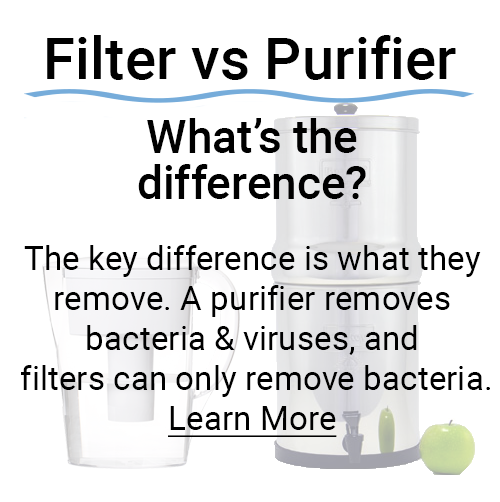 Filter vs Purifier