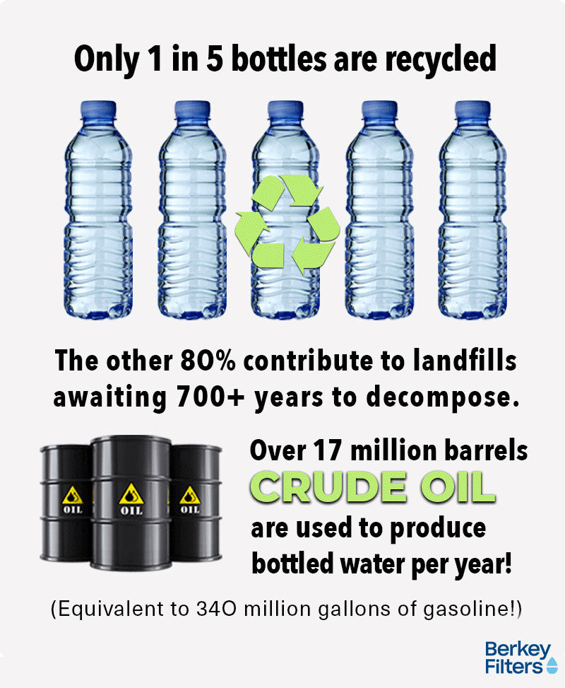 Bottle Water Infographic