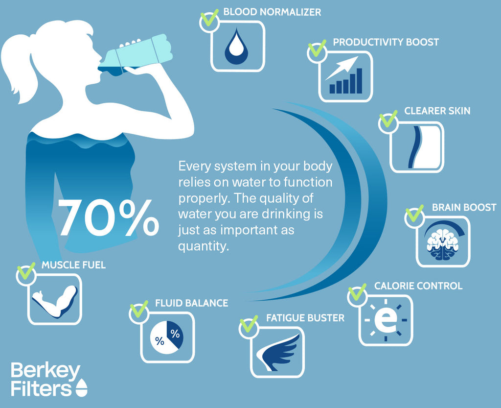 Infographic: How Much Your Body Depends on Water