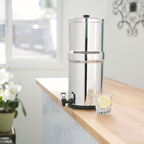 Travel Berkey in Kitchen