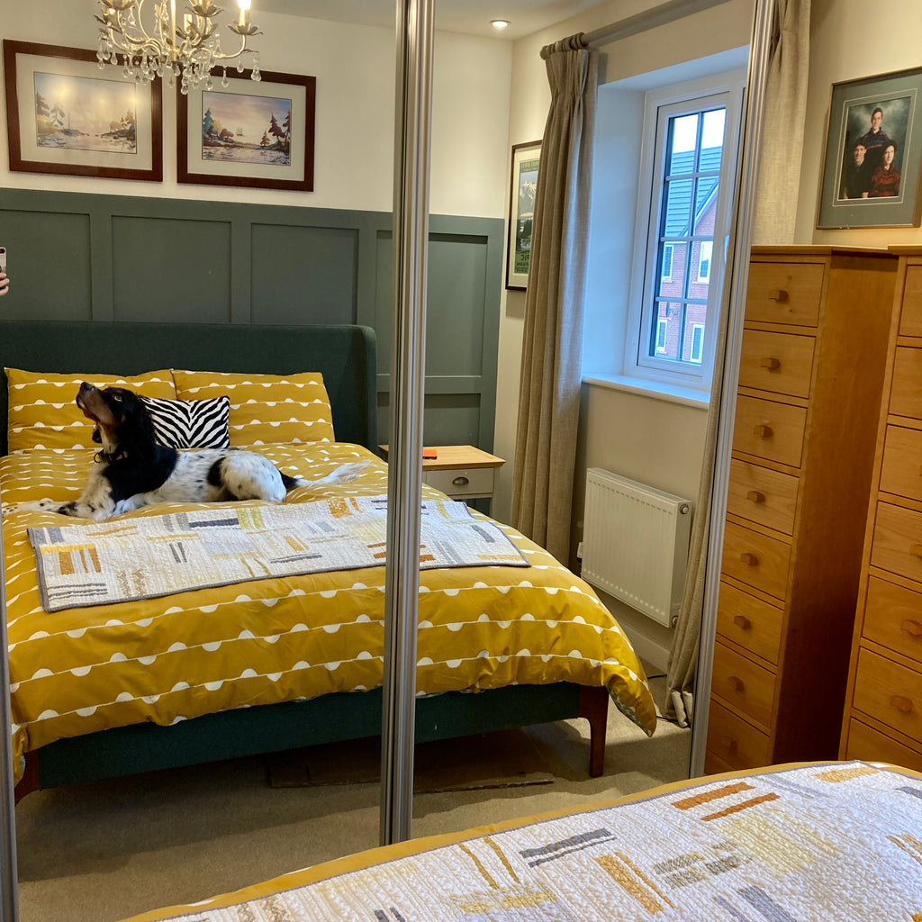 Styling your bed with both a duvet and quilt.  Bed with yellow duvet and an improv quilt at foot of bed with dog lying on bed.