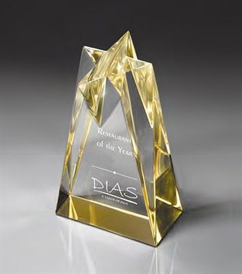 Sculpted Star Acrylic Award
