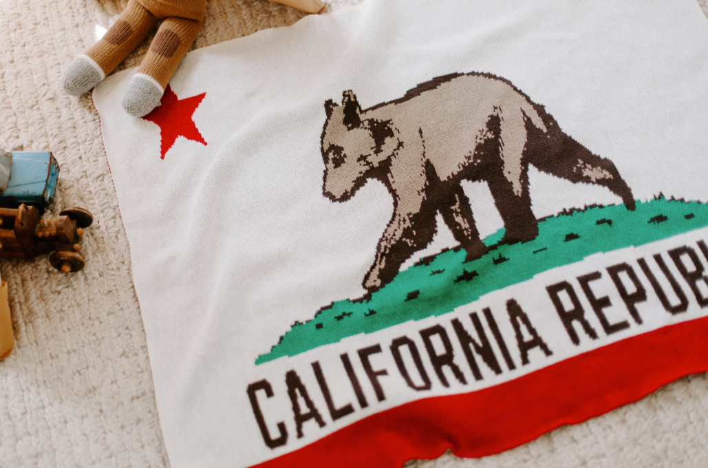 Baby California Flag Blanket
