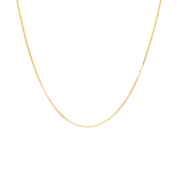Tai Barely There 14k Gold Necklace 16-17""