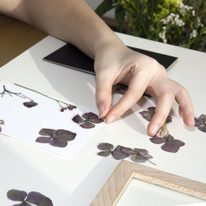 Make Your Own Pressed Flower Frame Art