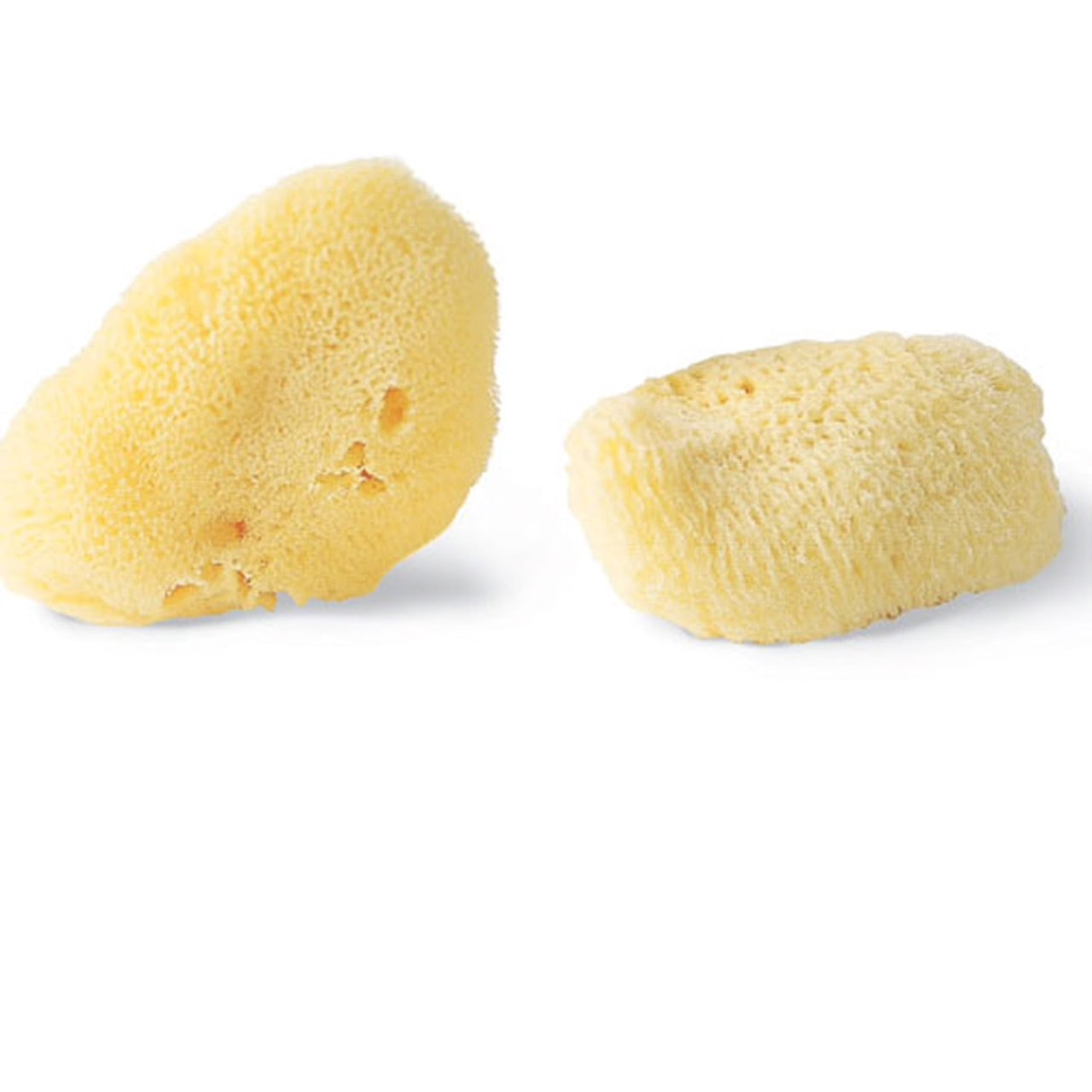 Silk Sponges / 2 Pack