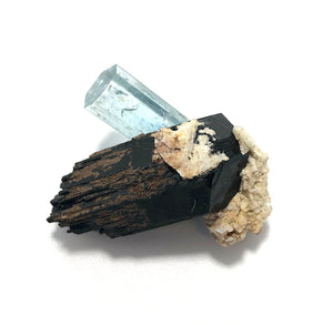 Aquamarine crystal on Black Tourmaline.