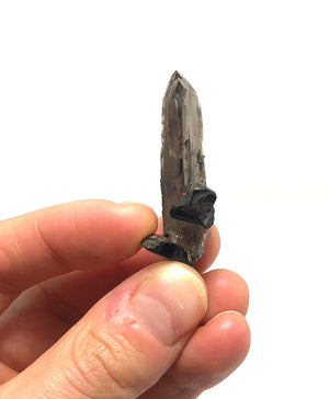Smoky Quartz with Aegerine