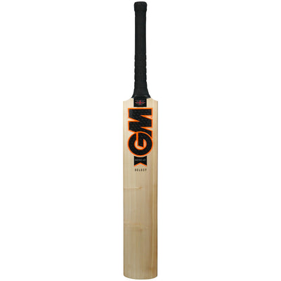 GM Hero DXM Select TTNOW Cricket Bat