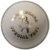 Kookaburra Special Test White Ball 156g
