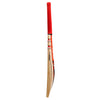 Gray Nicolls Ultra 2000 Cricket Bat