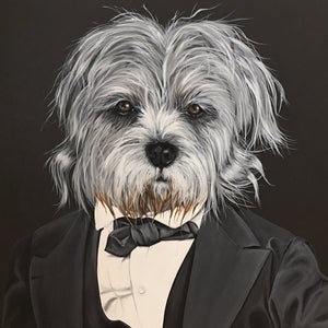 A Dog Named President Lincoln