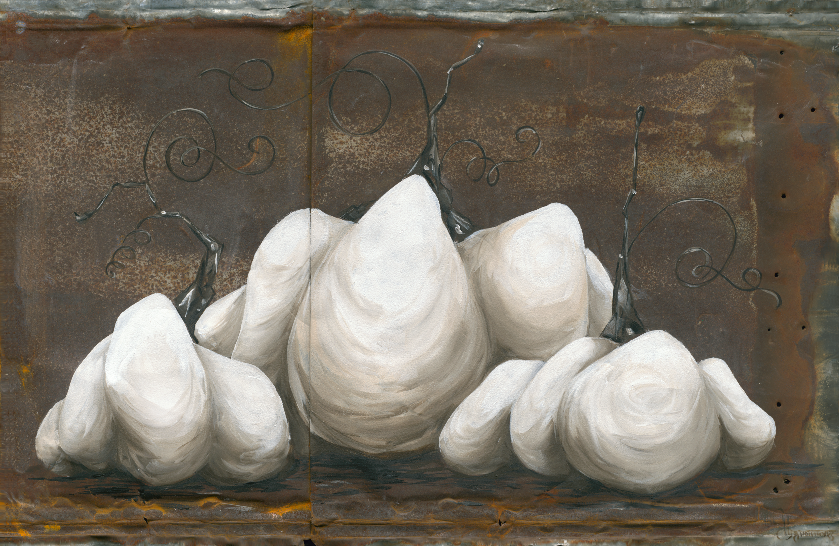 White Pumpkins on Rusty Metal
