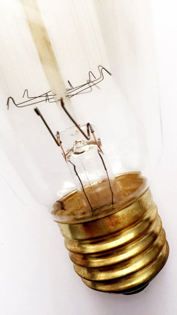 closeup of set of 2 fancy filament pear shaped globe or bulb with light off