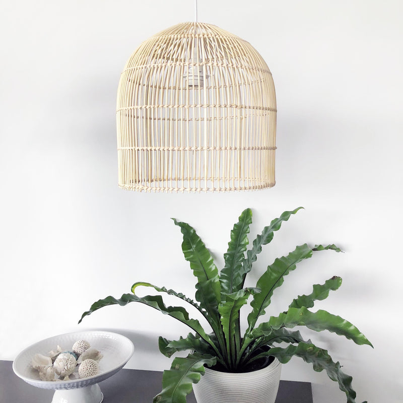 cane pendant light hamptons look with a plant and shells in a bowl