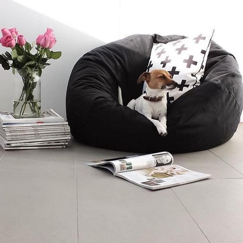 black velvet fur beanbag with cute dog sitting on it with a cross cushion