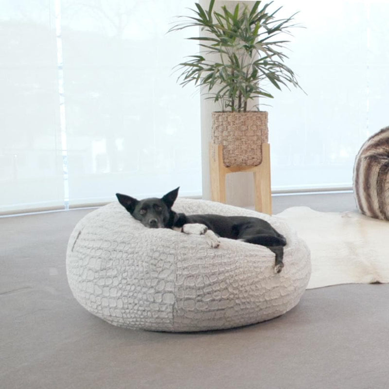 kelpie dog chilling on a fur bean bag in a living room