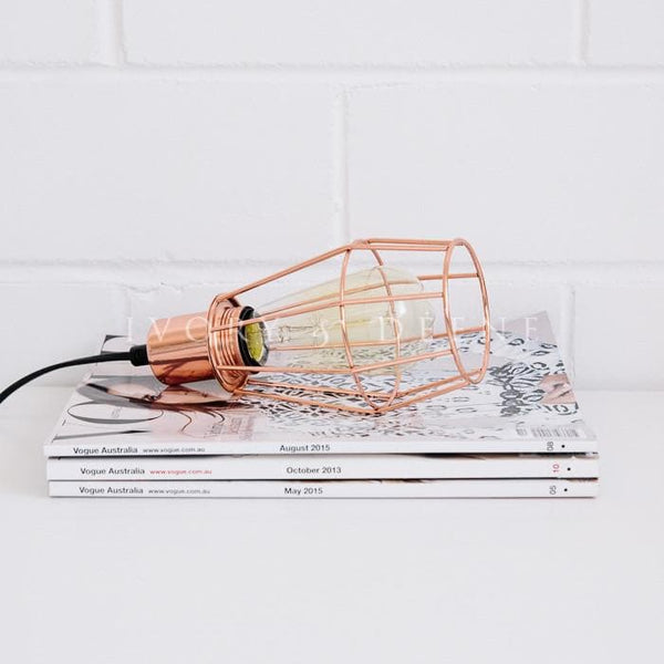 Copper Pendant Light with Black Cord and white feathers against a white brick wall