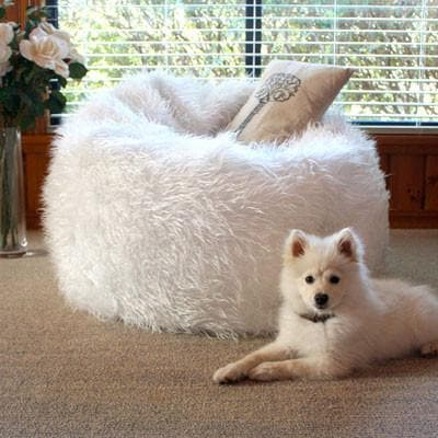 large shaggy white fur beanbag with cushion and cute puppy sitting on the floor