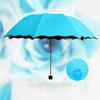 Flowering Color Changing Umbrella
