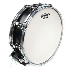 "Evans Power Center Reverse Dot 13"" Snare Drum Head"