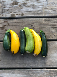 Courgette - Sold per head