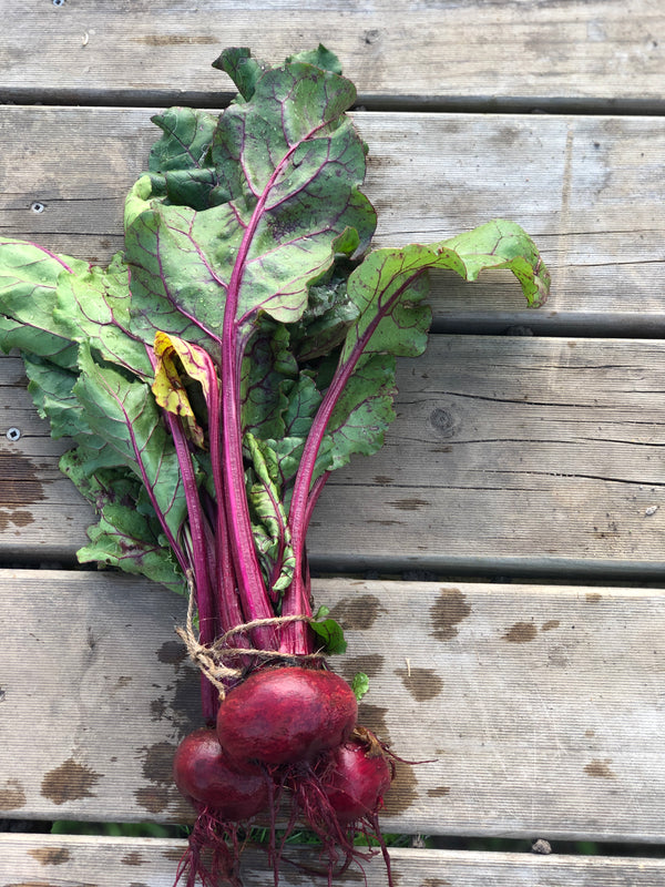 Beetroot - Bunch of 3