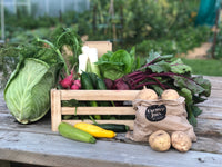 Mixed Organic Vegetable Box