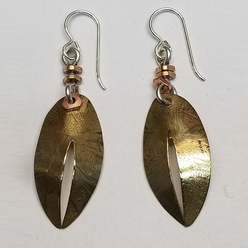 Fossil Shell earrings