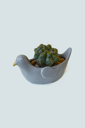 Pepper the Pigeon Planter - Philistine