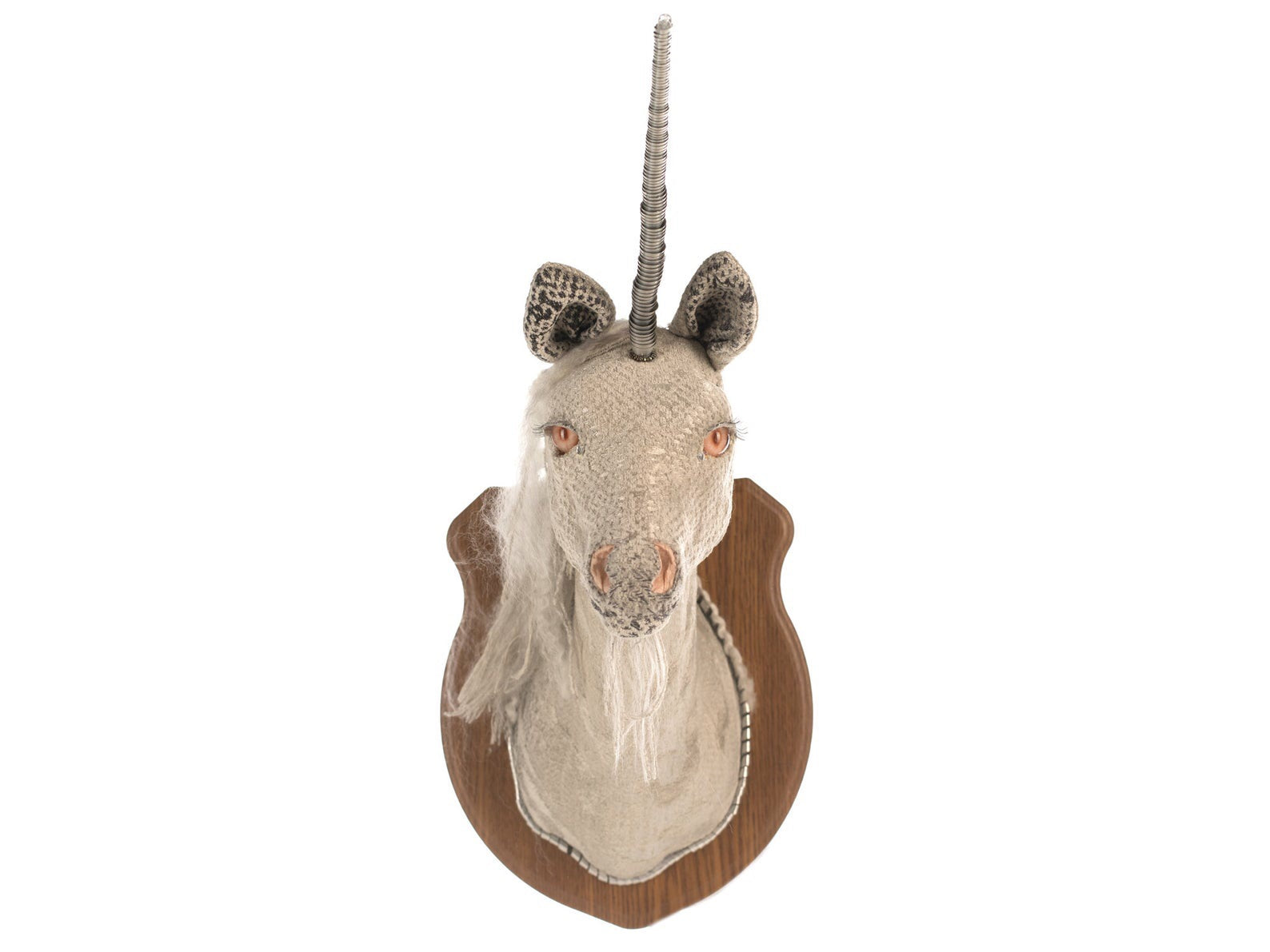 Unicorn (Unicornus) Head Mount *SOLD*