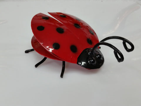 Mini Lady Bug