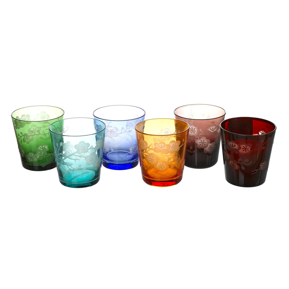 Tumbler glass blossom multicolor - set of 6