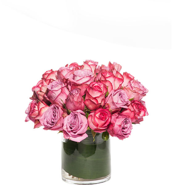 Bloom Rose Gift Arrangement