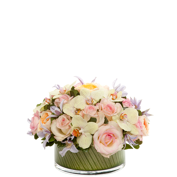Bloom Harmony Centerpiece