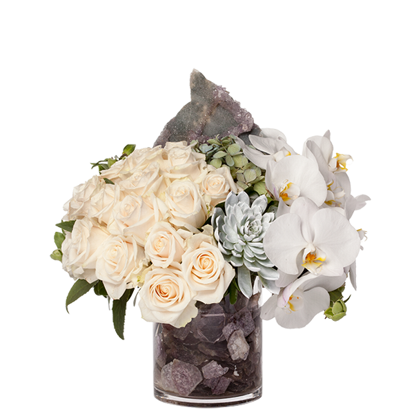 Bloom Earth Gift Arrangement