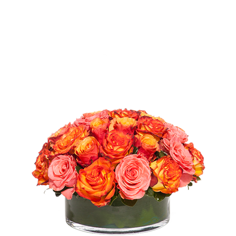 Bloom Rose Centerpiece