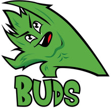 Load image into Gallery viewer, Best Buds: BUDS