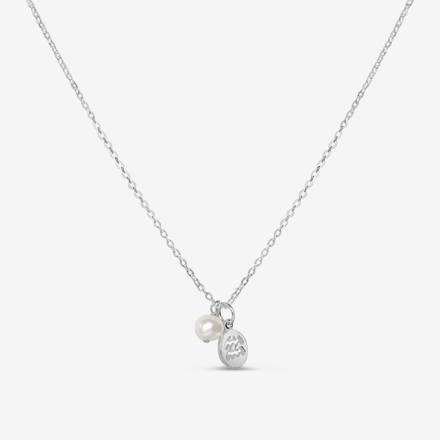 Zodiac | Star Sign Charm Necklace (Silver)