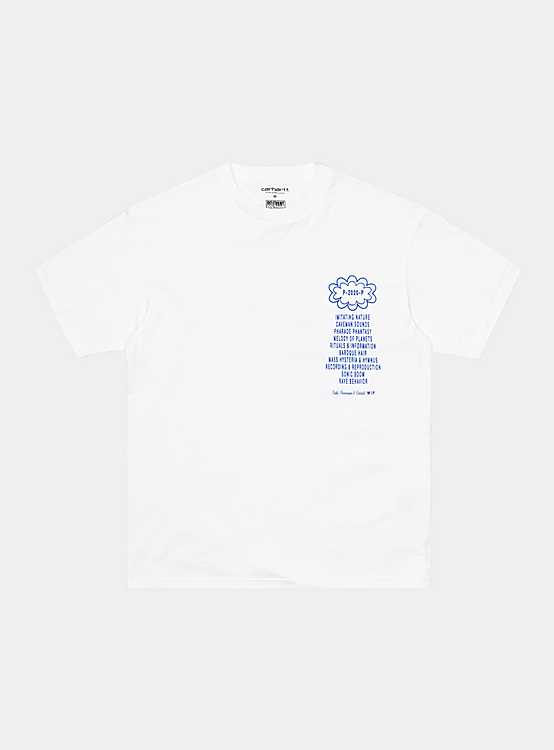 CARHARTT WIP PUBLIC POSSESSION T-SHIRT 'WHITE'
