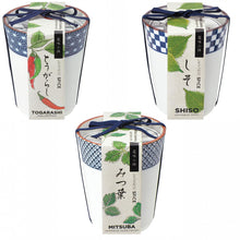 Load image into Gallery viewer, YAKUMI - Japanese Spice Grow Pots