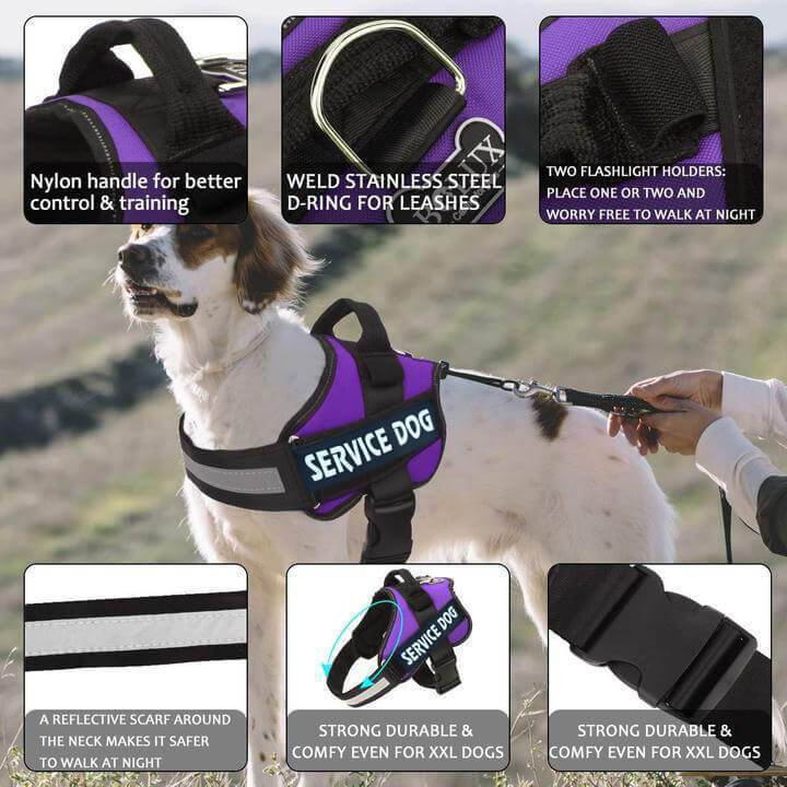 【HOT SALE】2020-New All-In-One No Pull Dog Harness