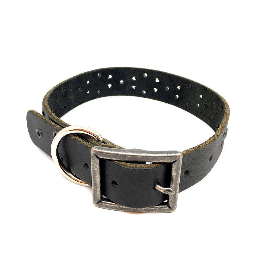 Dog Collar - Med/Lrg - Black with Eyelets by Greenbelts